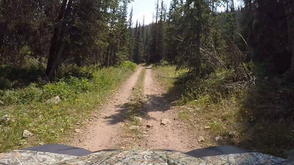 # 2 Trail